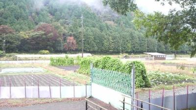 minowashinosato06.jpg