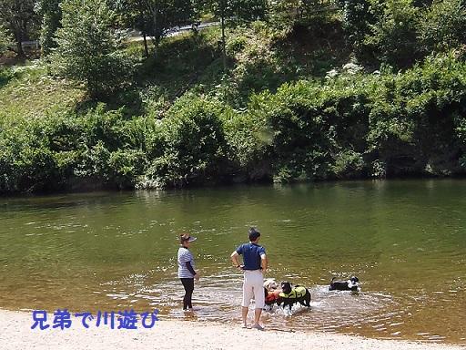 1381川遊び