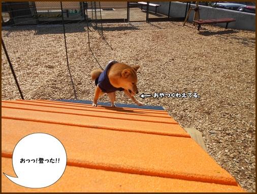 201202談合坂4