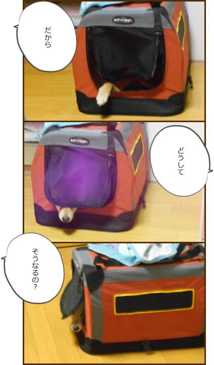 201203みかんバッグ2