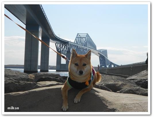201202東京ゲートブリッジ2