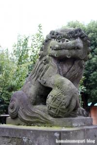 氷川神社(練馬区高野台)18