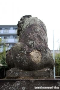 氷川神社(練馬区高野台)15