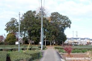 稲荷神社(所沢市林)6
