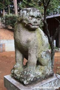 堀口天満天神社(所沢市上山口)12