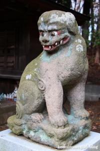 堀口天満天神社(所沢市上山口)17