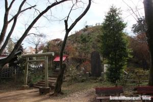 浅間神社(所沢市荒幡)9
