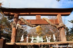 熊野神社(所沢市西新井町)7