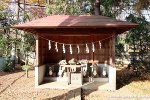 熊野神社(所沢市西新井町)15