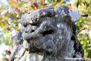 熊野神社(所沢市西新井町)28