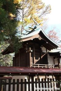 熊野神社(所沢市西新井町)17