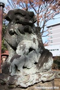 熊野神社(所沢市西新井町)19