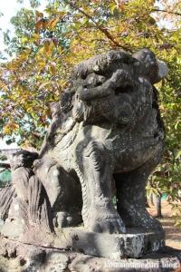 熊野神社(所沢市西新井町)23