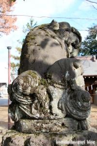 熊野神社(所沢市西新井町)25