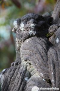 熊野神社(所沢市西新井町)29
