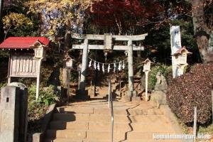 安松神社(所沢市下安松)1