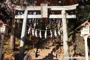 安松神社(所沢市下安松)3