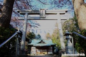 安松神社(所沢市下安松)16