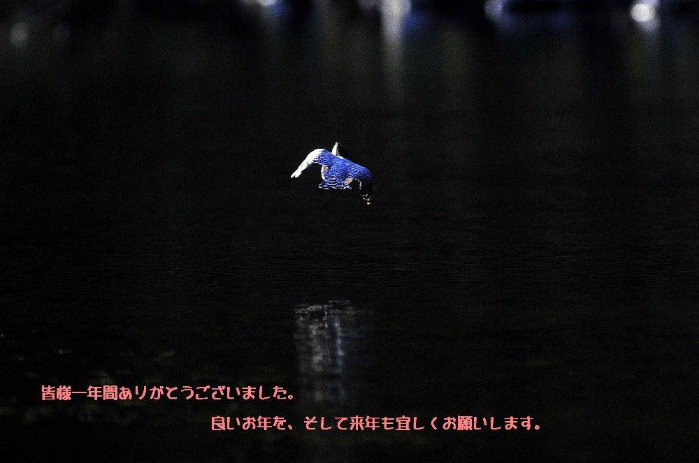 _DSC1138-2.jpg