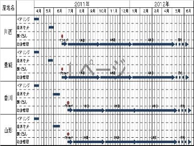 2011年度オオクワブリード表