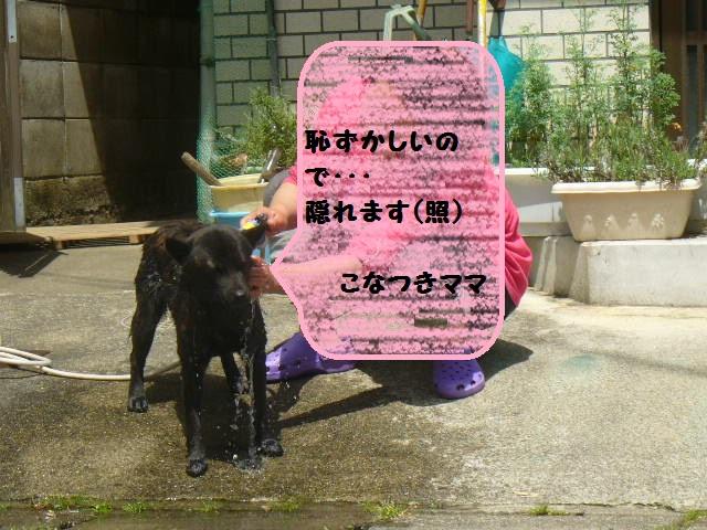 2虎捺ちんシャンプー1(5.14)