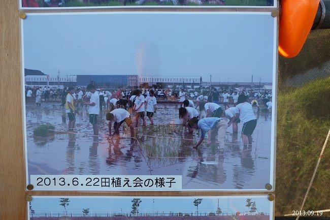 DSCF2279-s.jpg
