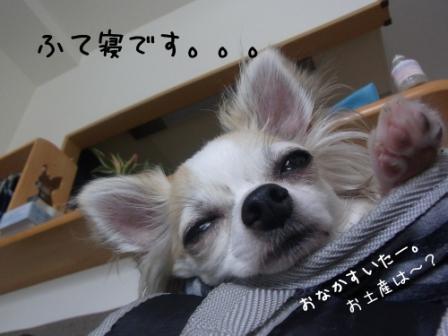6DnJZ[1]