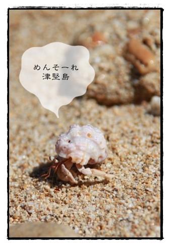 2010_07_17__3832.jpg