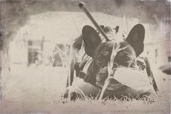 oldphoto-2.jpg