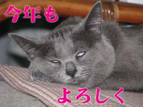131_Rのコピー