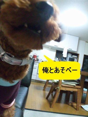 001_20101022001405.jpg