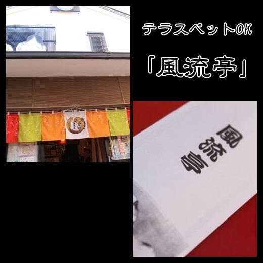 2_20131227181029513.jpg