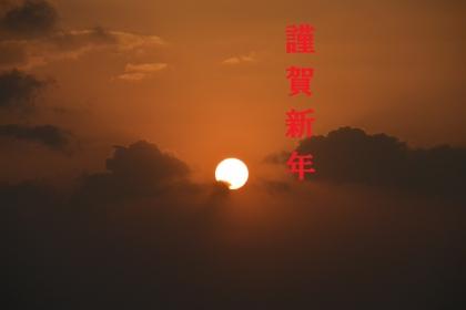 DSC_0231 - コピー