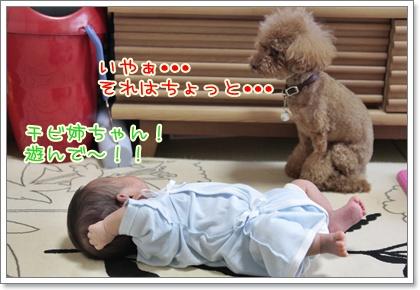 1_20110902145930.jpg