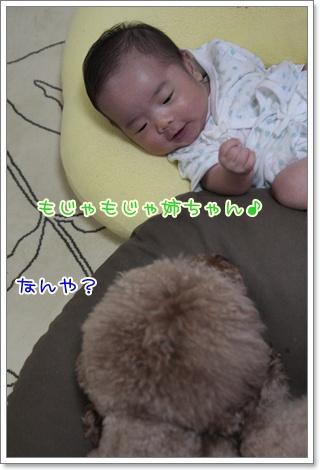 1_20110916125314.jpg