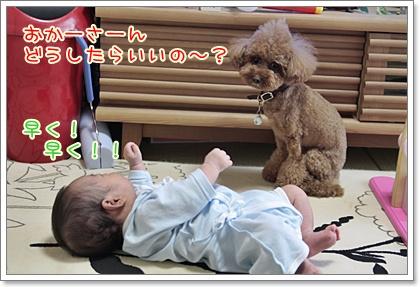 2_20110902145930.jpg