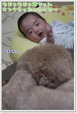 3_20110916125313.jpg