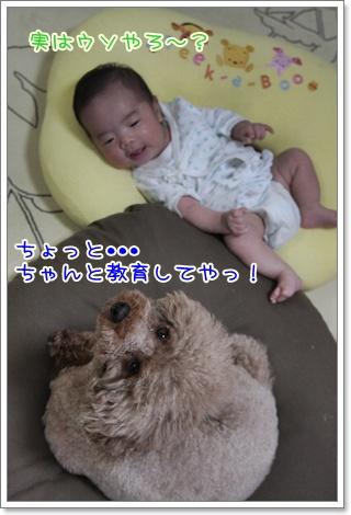 4_20110916125313.jpg