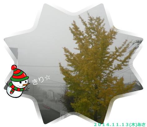 花ブ20141114-1