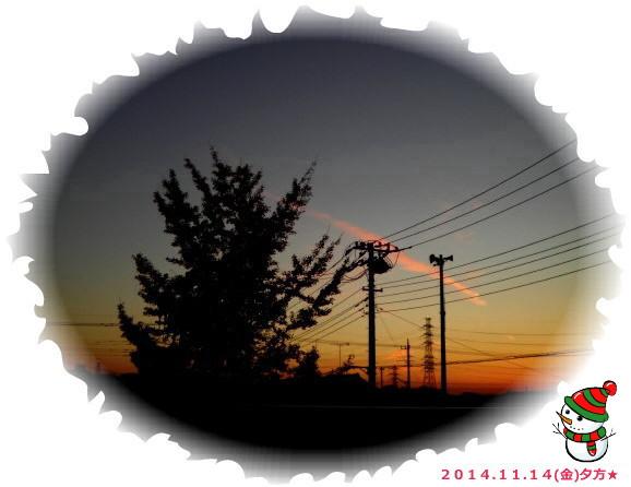 花ブ20141115-1