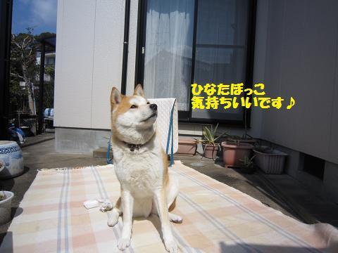 IMG_8351うめちゃん