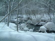 美脚への道♪ 温泉三昧♪ のんびり努力♪-冬