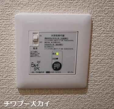P1040861.jpg