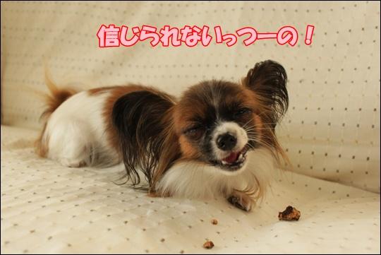 068_20111018150927.jpg