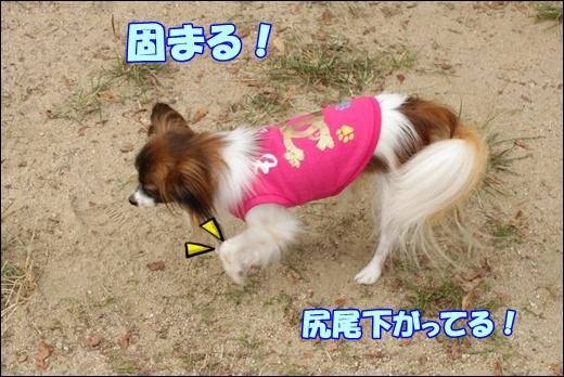 139_20111004222746.jpg