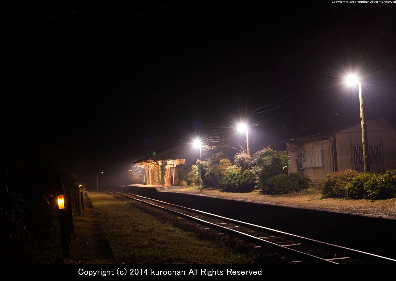 ASF_2750-2.jpg