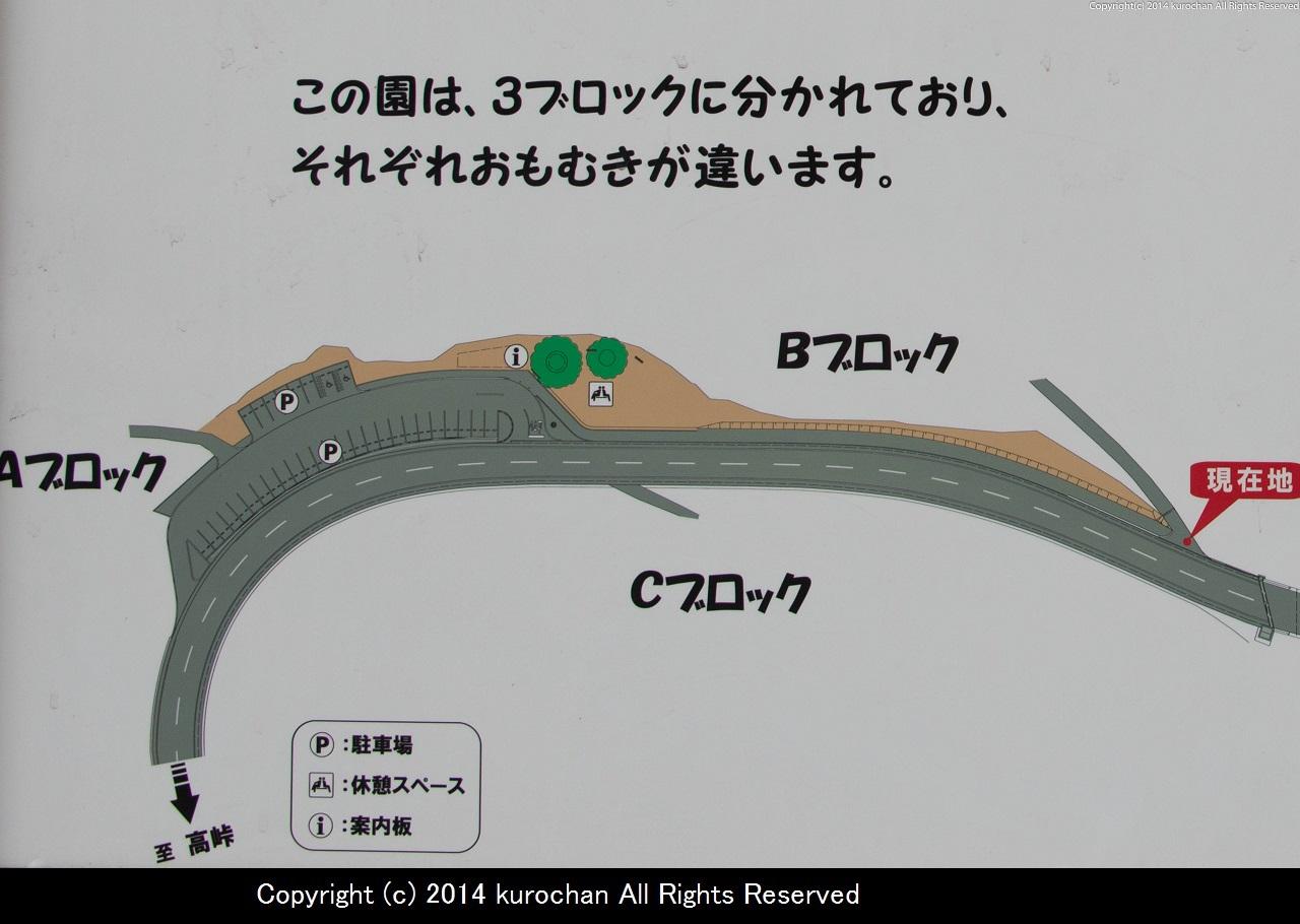 ASF_2901-2.jpg