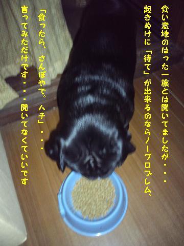 PAP_0060.jpg