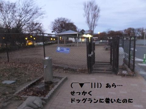 20131208mu66.jpg