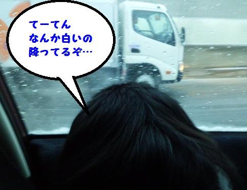 20131229mu1.jpg
